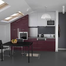 plinthe de cuisine inox cuisine couleur aubergine design ouverte sous combles aménagés
