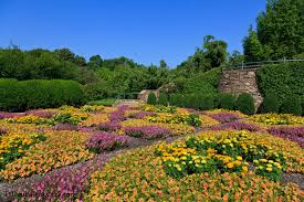 Asheville Nc Botanical Garden by How To Spend An Afternoon At The North Carolina Arboretum The