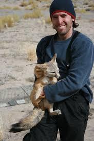 plants native to utah utah u0027s desert fox wild about utah