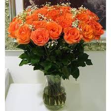 orange roses gifts 24 orange roses