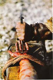 how jesus died for you read 55 amazing facts on jesus death