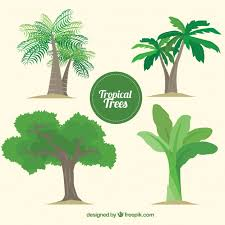 pack of tropical trees vector free