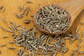 carvi cuisine caraway carum carvi seeds stock image image of spicy medicine