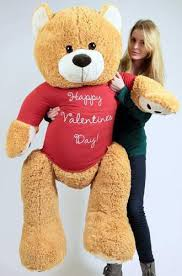 big bears for valentines day big plush teddy five honey brown