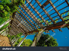 garden lattice walkway stone pavers vine stock photo 137106401