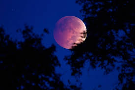 how to take a picture of the moon that doesn t look like a tiny