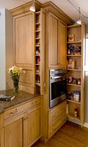 Kitchen Cabinet Spice Racks 25 Best Spice Cabinets Ideas On Pinterest Pull Out Spice Rack