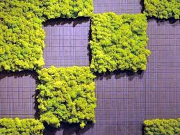 Watering Vertical Gardens - create an interior vertical garden with moss tiles and preserved