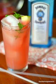 the watermelon gin rickey the view from great island