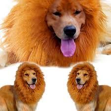 pet dog lion wigs mane hair party fancy amazon co uk pet supplies