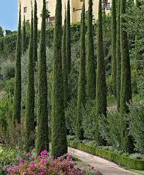 best 25 italian garden ideas on pinterest italian villa villas