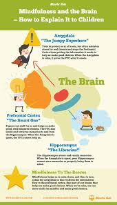 What Portion Of The Brain Controls Respiration Mindfulness And The Brain U2014how To Explain It To Children Blissful