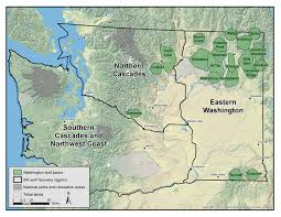 Wenatchee Washington Map by Washington Wolf Packs Washington Department Of Fish U0026 Wildlife