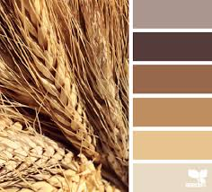 wheat tones color palettes seeds and colors