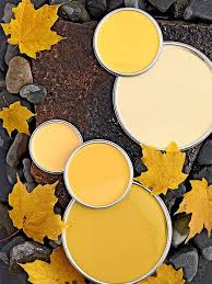obsession du jour bliss color pallets and pallets