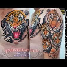tiger family in progress paradise ink bali