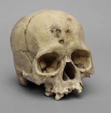 gift this not that bone clones vs skulls unlimited