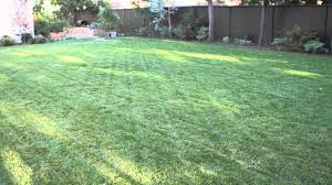 Basic Backyard Landscaping Ideas by How To Landscape A Big Backyard Landscaping U0026 Garden Design