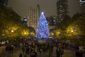 chicago u0027s christmas tree is a 62 foot spruce from suburban