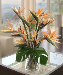 atlanta flower delivery birds of paradise tropical flower arrangement deliver today