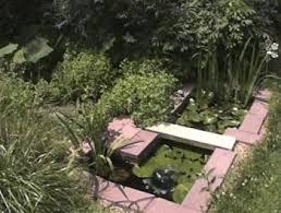 robyn u0027s tub pond page