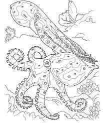 octopus ocean coloring page u0026 coloring book