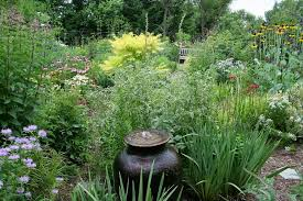 native plants and wildlife gardens t h e d e e p m i d d l e gardening with natives as a moral