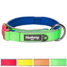 Comfortable Dog Collar Leashes Harnesses Collars U0026 Tags U2014 When Dogs Talk