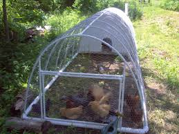 chicken coop plans pvc 4 suzeeg chicken coop backyard chickens