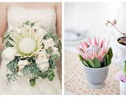 wedding flowers for guests wedding flower inspiration protea
