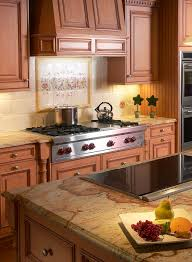 delightful portable electric cooktop decorating ideas gallery in