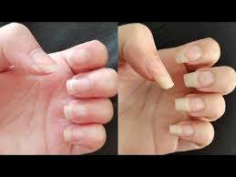 how to grow your nails fast in a week u2026 pinteres u2026