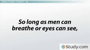 Blindness Chapter Summaries Shakespeare U0027s Sonnet 18 Summary Theme U0026 Analysis