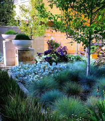 australian native plants perth landscape garden design front garden design landscaping ideas