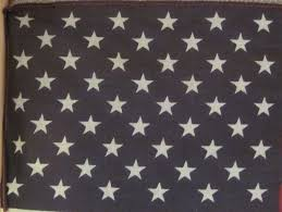 Flag 48 Stars The Patriotic Quilter Flag Fun