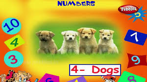 learning numbers for kids learn to count 0 to 11 with egg numbers