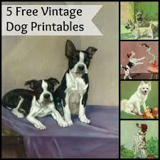 103 best dog diy free printables images on pinterest free