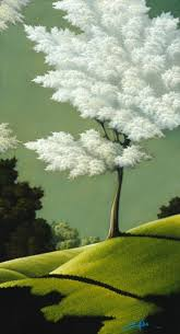 855 best trees images on tree book illustrations