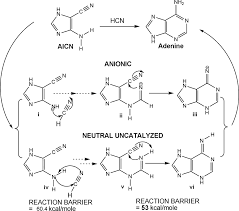 Mole Map Chemical Evolution The Mechanism Of The Formation Of Adenine