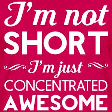 i m not i m concentrated awesome i m not i m concentrated awesome t shirt spreadshirt