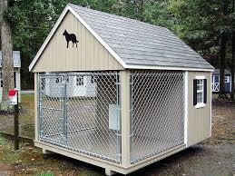 cool dog houses unique dog houses designs unique dog houses designs best fancy ideas