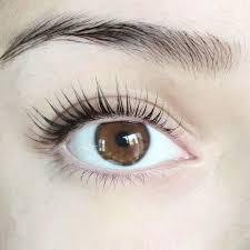 Professional Eyelash Extension We Got Eyelash Lifts And Our Lashes Looked Insane