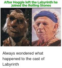 after hoggle left the labyrinth he joined the rolling stones always
