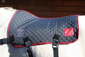 benefits using magnetic horse therapy horses of sweden
