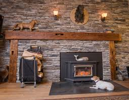 create a pet paradise in your home angie u0027s list