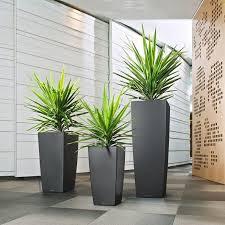 vasi da interno vendita vasi pescara valpescara garden