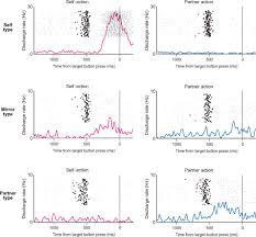 single neuron and genetic correlates of autistic behavior in