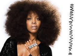 how to wesr thin wiry hair natural the natural hair revolution the blooming