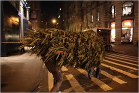 for the christmas tree man a special delivery the new york times