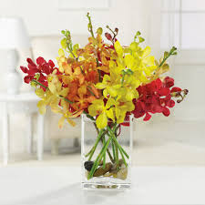 local florist orchids galore las vegas florist flower delivery by vip floral